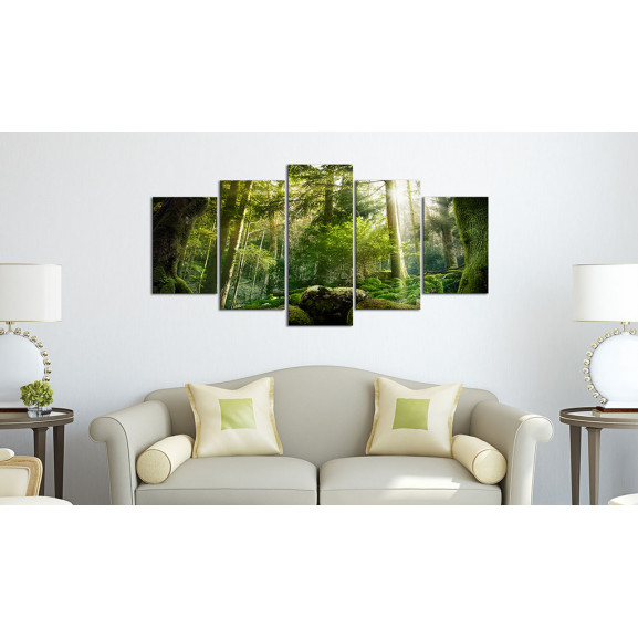 Tablou The Beauty Of The Forest 100 cm x 50 cm naturlich.ro
