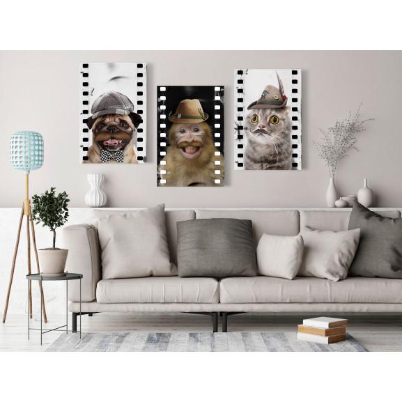 Tablou Funny Pets (Collection) 120 cm x 60 cm naturlich.ro
