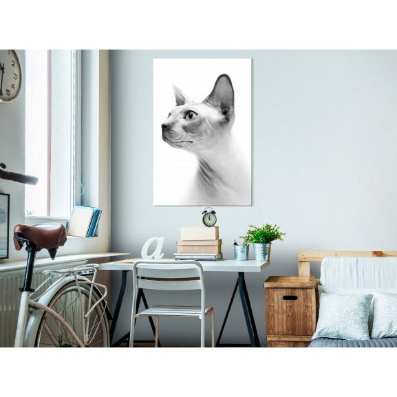 Tablou Hairless Cat (1 Part) Vertical 40 cm x 60 cm naturlich.ro