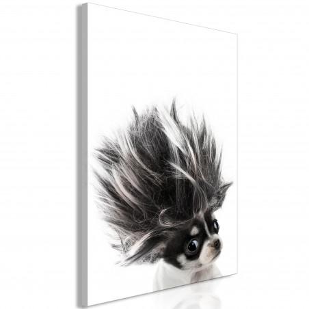 Tablou Chihuahua (1 Part) Vertical 40 cm x 60 cm-01