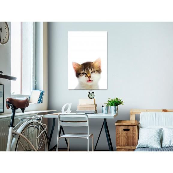 Tablou Vexed Cat (1 Part) Vertical 40 cm x 60 cm naturlich.ro
