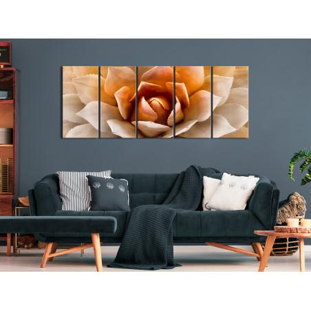 Tablou Agave (5 Parts) Narrow Orange 200 cm x 80 cm-01