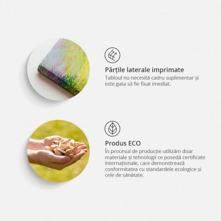Tablou Rose Composition (5 Parts) Narrow Colourful 200 cm x 80 cm-01