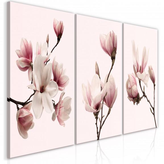 Tablou Spring Magnolias (3 Parts) 120...