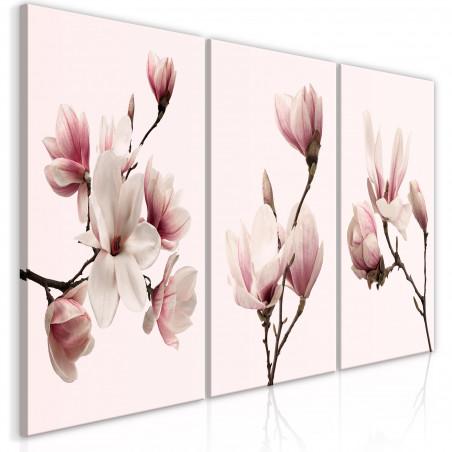 Tablou Spring Magnolias (3 Parts) 120 cm x 60 cm-01