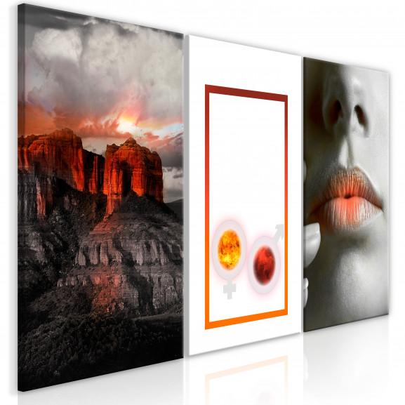 Tablou Passion (3 Parts) 120 cm x 60 cm