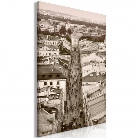 Tablou Cracow: Florianska Street (1 Part) Vertical 40 cm x 60 cm-01