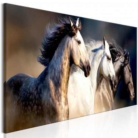 Tablou Sons Of The Wind (1 Part) Narrow 120 cm x 40 cm-01