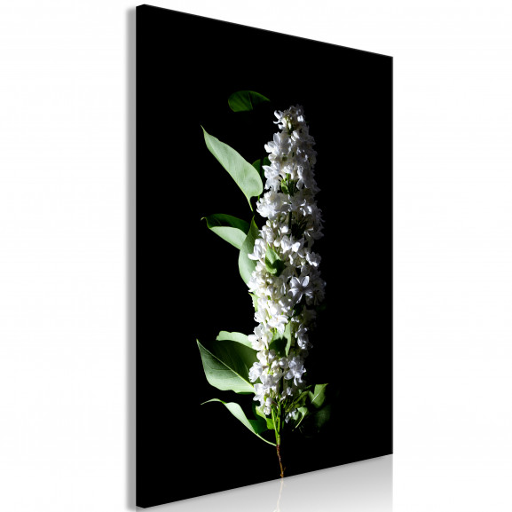 Tablou White Lilacs (1 Part) Vertical...