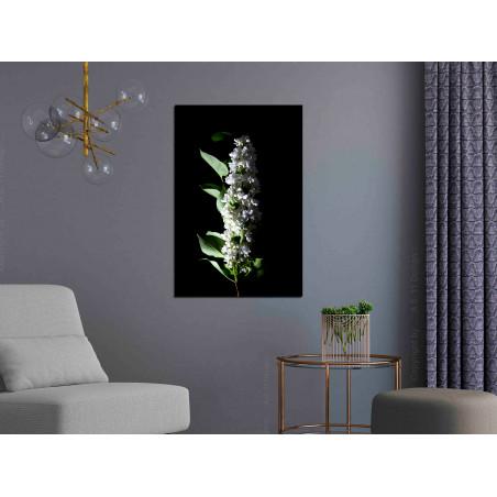 Tablou White Lilacs (1 Part) Vertical 40 cm x 60 cm-01
