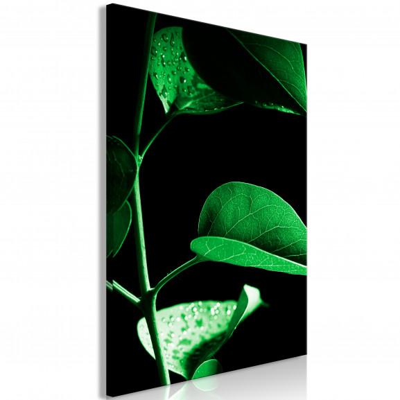 Tablou Plant In Black (1 Part)...