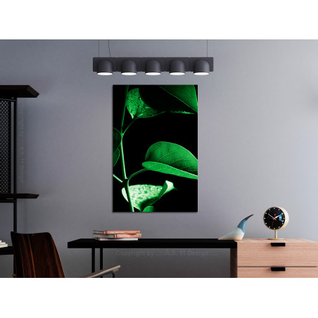 Tablou Plant In Black (1 Part) Vertical 40 cm x 60 cm-01