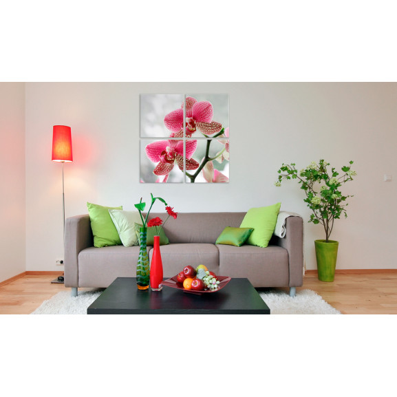 Tablou Fancy Orchid 40 cm x 40 cm naturlich.ro