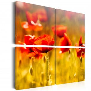 Tablou Summertime 40 cm x...