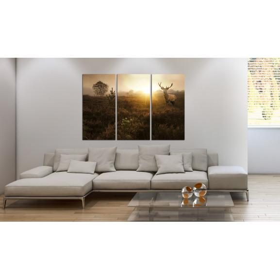 Tablou Foggy Field I 120 cm x 80 cm naturlich.ro