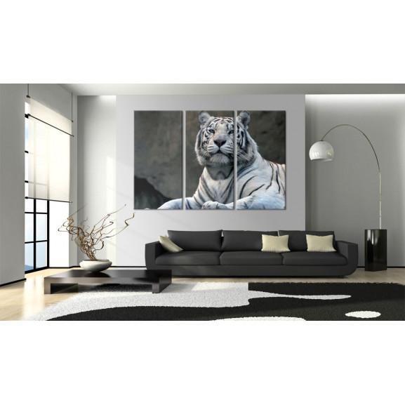 Tablou White Tiger 120 cm x 80 cm naturlich.ro