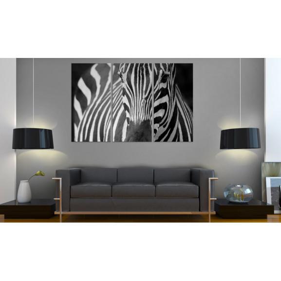Tablou Mrs. Zebra 120 cm x 80 cm naturlich.ro