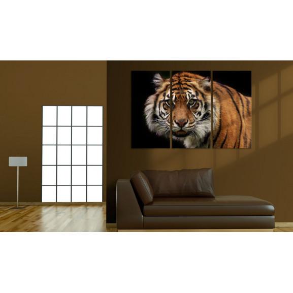 Tablou A Wild Tiger 120 cm x 80 cm naturlich.ro