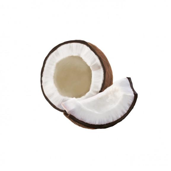 Lumanare Parfumata Coconut naturlich.ro