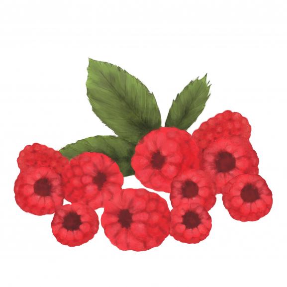 Lumanare Parfumata Sun Ripe Raspberry naturlich.ro