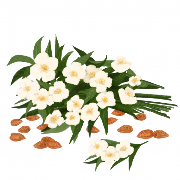 Lumanare Parfumata Almond & Jasmine naturlich.ro