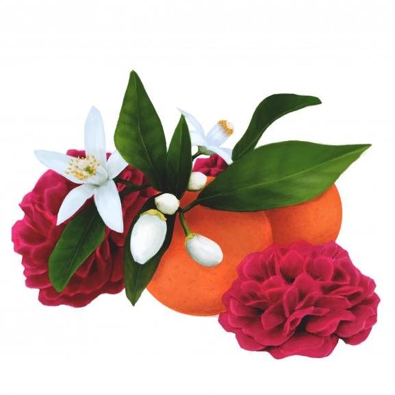 Lumanare Parfumata Velvet Rose & Orange Blossom naturlich.ro
