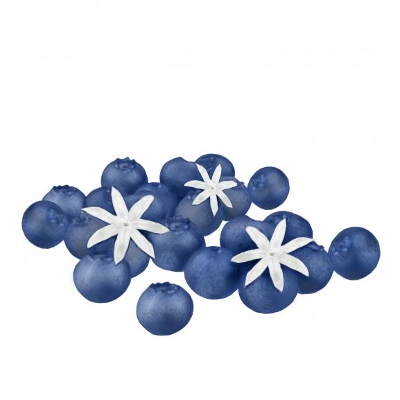 Parfum de Interior Blueberry & Jasmine naturlich.ro