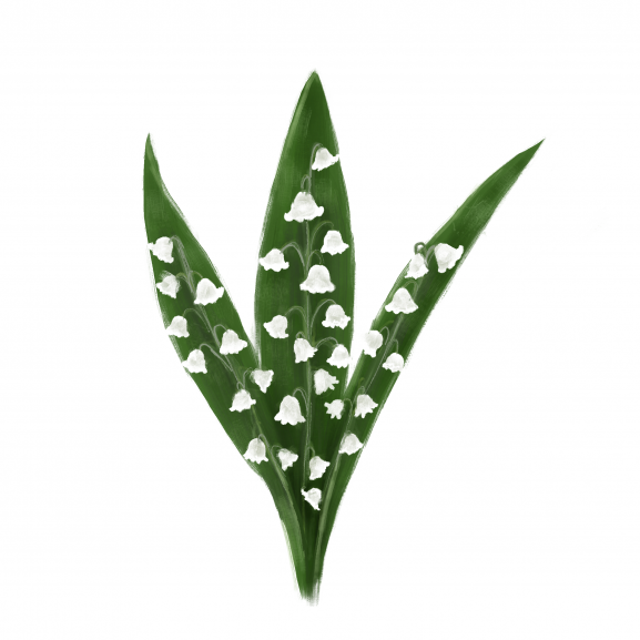 Parfum de Interior Lily of the Valley naturlich.ro
