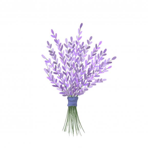 Pastila de Ceara Parfumata Lavender naturlich.ro