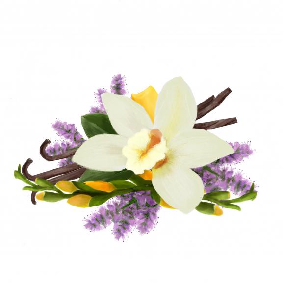 Pastila de Ceara Parfumata Patchouli, Freesia & Vanilla naturlich.ro
