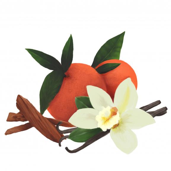 Parfum de Interior Orange, Vanilla & Sandalwood naturlich.ro