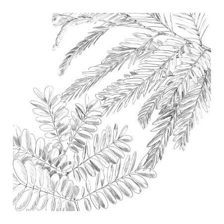 Set Lenjerie Pat Gold Jungle-01