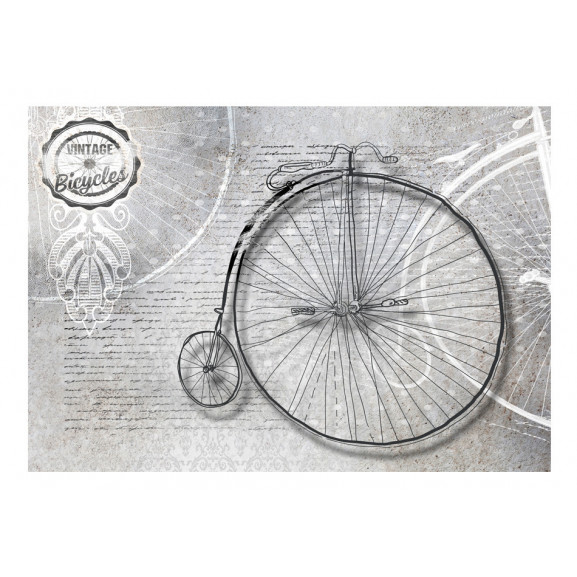 Fototapet Vintage Bicycles Black And White 100 cm x 70 cm naturlich.ro