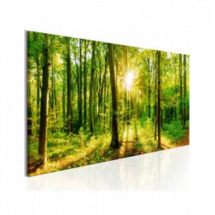 Tablou Green Magic 120 cm x...