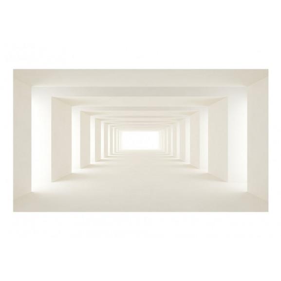 Fototapet Xxl Into The Light Ii 500 cm x 280 cm naturlich.ro