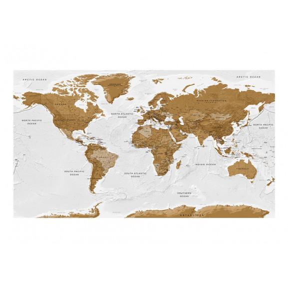 Fototapet Xxl World Map: White Oceans Ii 500 cm x 280 cm naturlich.ro
