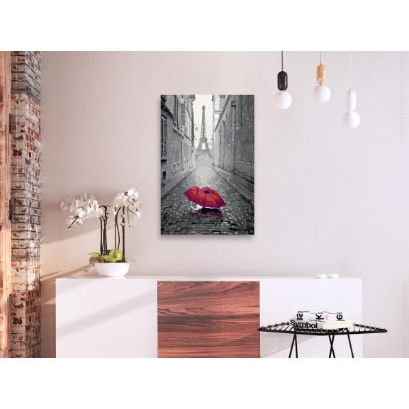 Pictatul Pentru Recreere Paris (Red Umbrella) 40 cm x 60 cm naturlich.ro