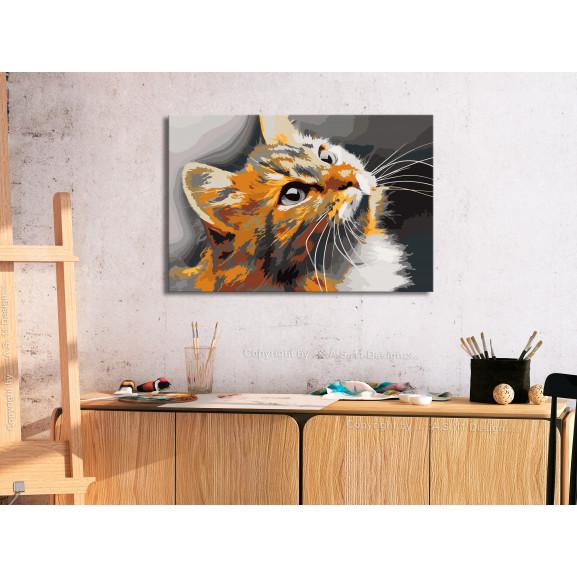 Pictatul Pentru Recreere Red Cat 60 cm x 40 cm naturlich.ro