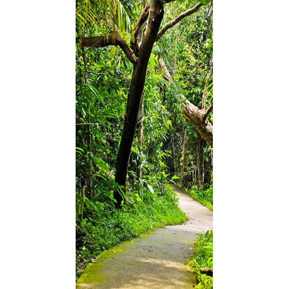 Fototapet Pentru Ușă Forest Avenue 100 cm x 210 cm naturlich.ro