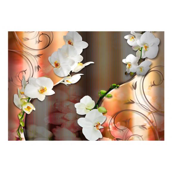 Fototapet Orchid 100 cm x 70 cm naturlich.ro
