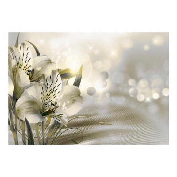 Fototapet Green Daybreak 100 cm x 70 cm naturlich.ro