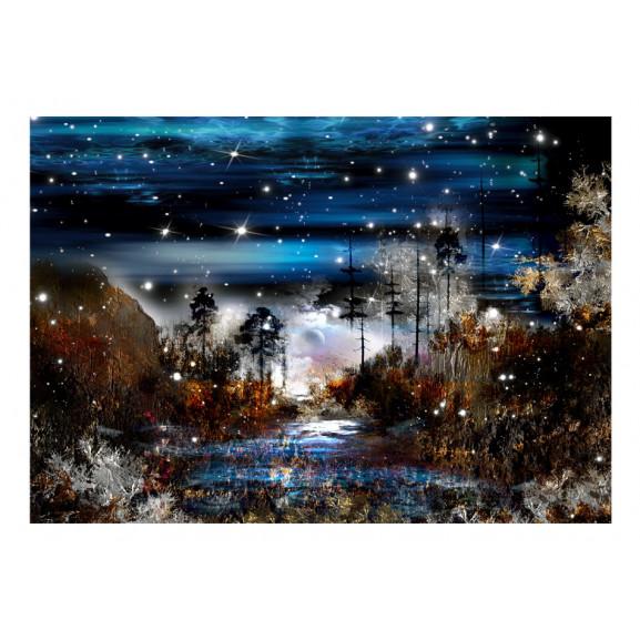 Fototapet Night In The Forest 100 cm x 70 cm naturlich.ro