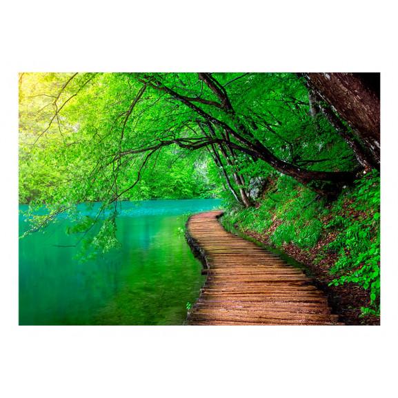 Fototapet Green Peace 100 cm x 70 cm naturlich.ro