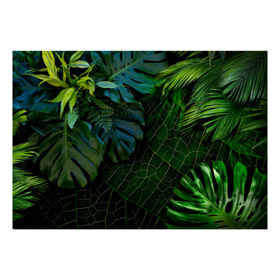 Fototapet Dark Jungle 100 cm x 70 cm naturlich.ro