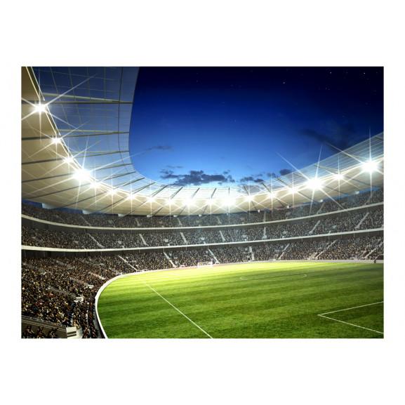 Fototapet National Stadium 200 cm x 154 cm naturlich.ro