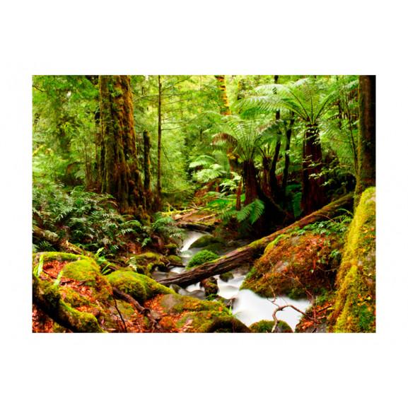 Fototapet Rainforest 200 cm x 154 cm naturlich.ro