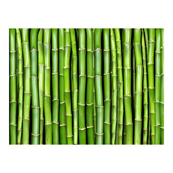 Fototapet Bamboo Wall 200 cm x 154 cm naturlich.ro