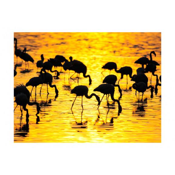 Fototapet Kenya: Flamingos By The Lake Nakuru 200 cm x 154 cm naturlich.ro