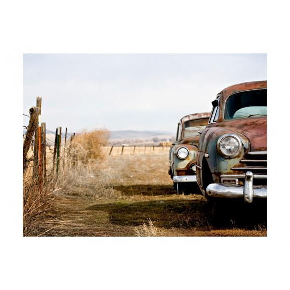 Fototapet Two Old, American Cars 200 cm x 154 cm naturlich.ro