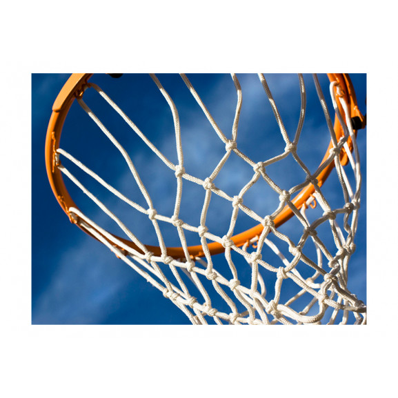 Fototapet Sport Basketball 200 cm x 154 cm naturlich.ro